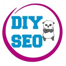 Google's Panda update, SEO DIY and more