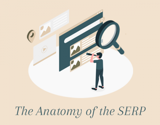 The Anatomy of the SERP