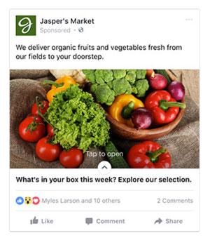 Facebook Canvas Ads