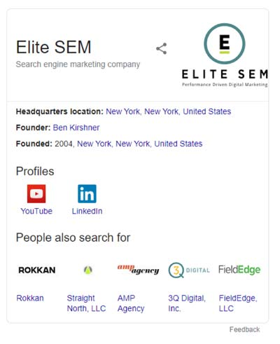 Brand-Specific Knowledge Graph Panel on the SERP